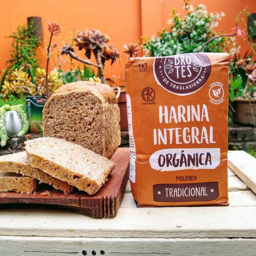 harina de trigo integral orgánica BROTES DE TRASLASIERRA